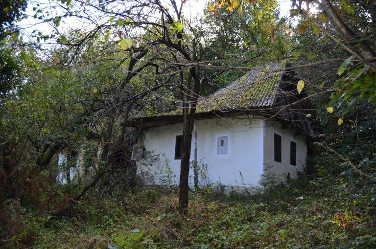 Glavna hiša 7