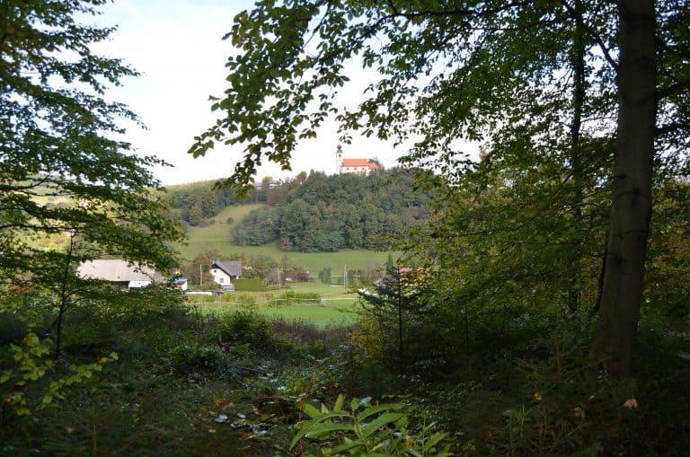 Pogled iz gozda na cerkev