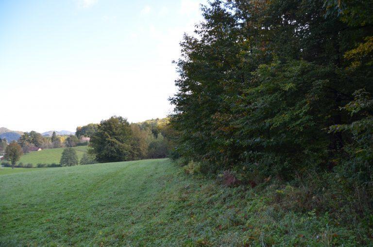 Pogled od hiše na naselje 1