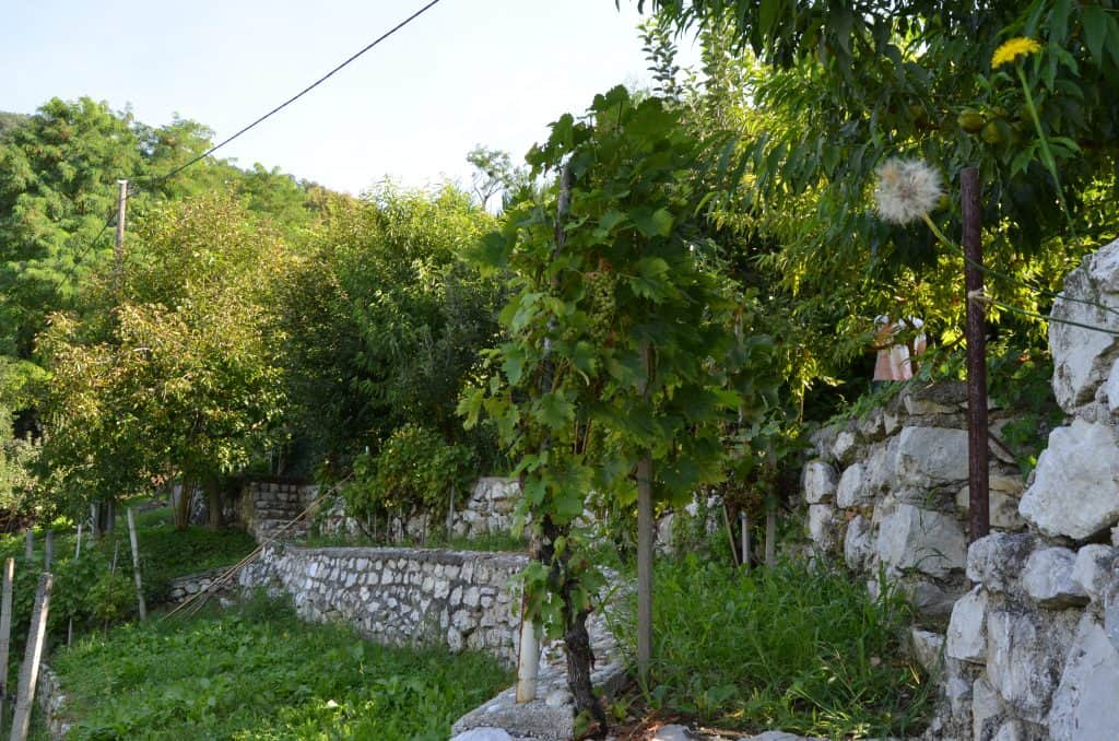 Vrt 2 podporni zid